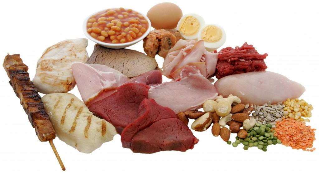 غذاهای پروتئین دار برای عضله سازی در بانوان